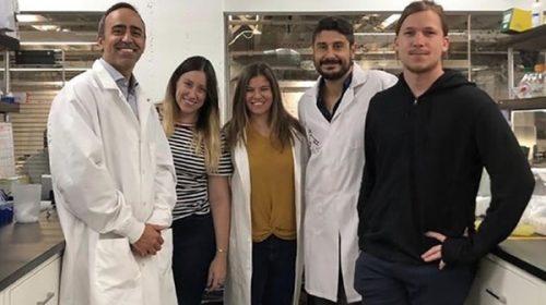 Científicos argentinos crearon kit de diagnóstico