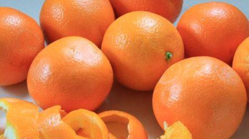 Productores citrícolas advirtieron que podrían frenar la cosecha en el norte
