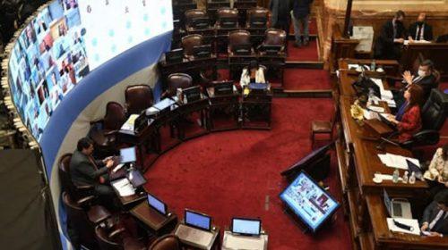 El Senado le hará cambios a la ley de teletrabajo aprobada en Diputados